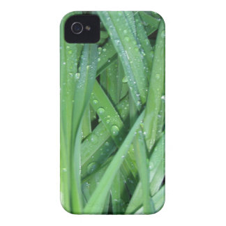 Wet Grass Samsung Galaxy S T-Mobile Vibrant Case Blackberry Bold Cover