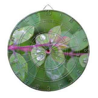 wet leaf in the garden dart board