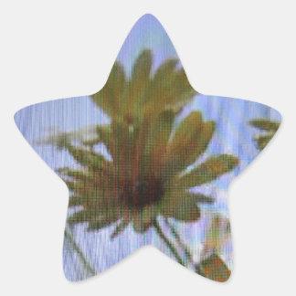 Wet marguerites. star sticker