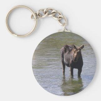 wet moose basic round button keychain