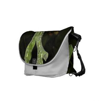 Wet Oak Leaf Messenger Bag