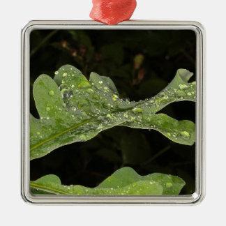 Wet Oak Leaf Metal Ornament