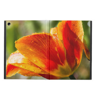 Wet Orange and Yellow Tulip iPad Air Covers