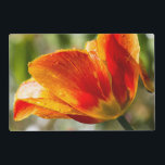 """Wet Orange and Yellow Tulip Placemat<br><div class=""""desc"""">An orange and yellow tulip in the morning sunshine,  dripping wet with water drops after a spring rain.</div>"""