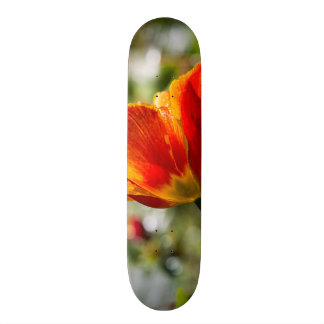 Wet Orange and Yellow Tulip Skateboard Deck