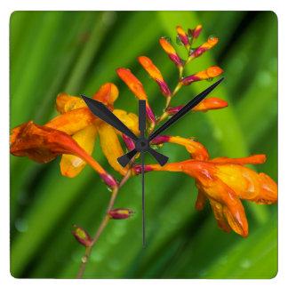 Wet orange flower square wall clock
