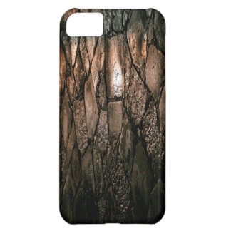 Wet pavement texture in brown iPhone 5C case