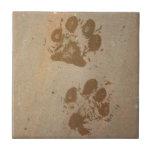 Wet Paw Prints Ceramic Tile