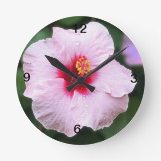 Wet Pink Hibiscus Clock