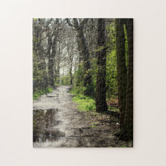 Wet Rain Puddle Path in Moss Covered Tree Forest Jigsaw Puzzle