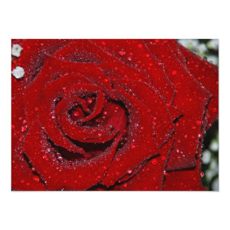 Wet Rose 5.5x7.5 Paper Invitation Card