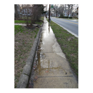 Wet Sidewalk Postcard