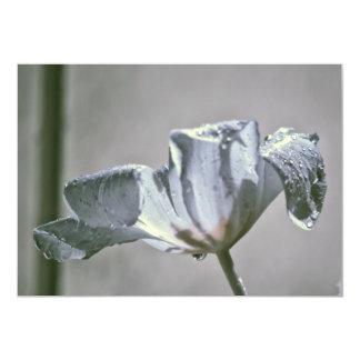 Wet Tulip Infrared Card