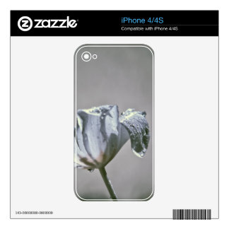 Wet Tulip Infrared iPhone 4 Decal