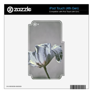Wet Tulip Infrared iPod Touch 4G Skin