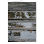 Wet Wood with puddles background image Greeting Cards