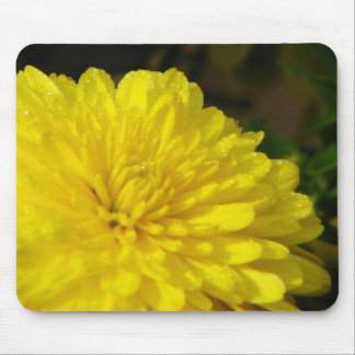 Wet Yellow Mum Mouse Pad