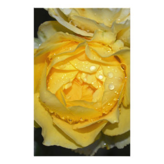 Wet Yellow Rose Stationery