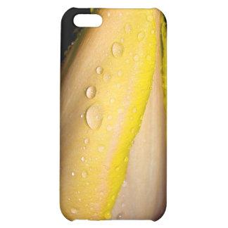 Wet Yellow Tulip Flower iPhone 5C Cover