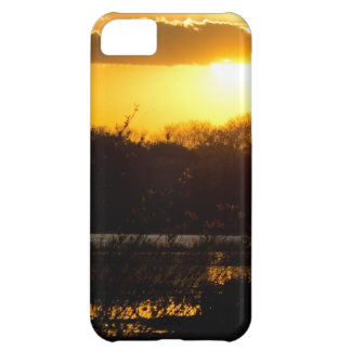 Wetland Gold iPhone 5C Cover