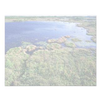 Wetland habitat at Okefenokee National Wildlife Re Invitation