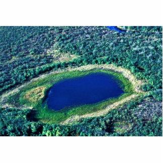 Wetland Pond Photo Sculpture