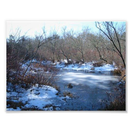 Wetland Ponds in Winter Art Photo