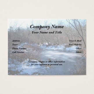 Wetland Ponds in Winter Business Card