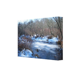 Wetland Ponds in Winter Canvas Print
