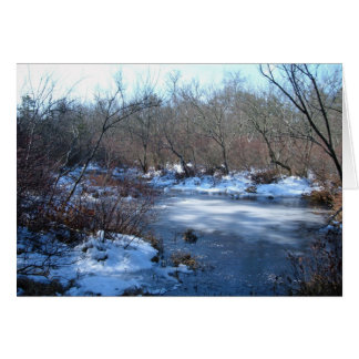 Wetland Ponds In Winter: Happy Birthday Card