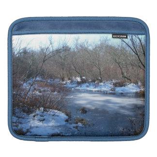 Wetland Ponds in Winter iPad Sleeve