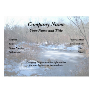 Wetland Ponds in Winter Large Business Card
