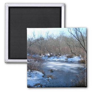 Wetland Ponds In Winter Magnet