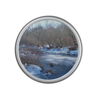 Wetland Ponds in Winter Speaker