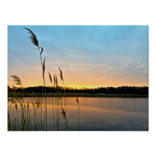 Wetland Sunset Print