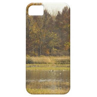 WETLAND WITH AUTUMN TREES IN BACKGROUND AND DUCKS iPhone SE/5/5s CASE