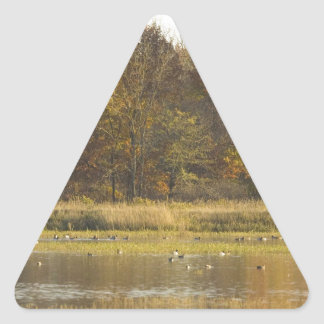 WETLAND WITH AUTUMN TREES IN BACKGROUND AND DUCKS TRIANGLE STICKER