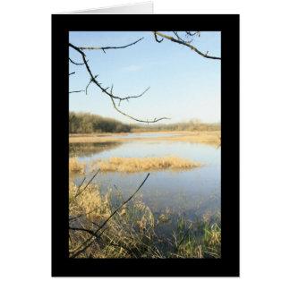 Wetland Wonderland Greeting Card
