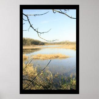 Wetland Wonderland Posters