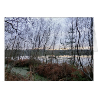 Wetlands and Blakemere Moss in Delamere Forest Greeting Cards