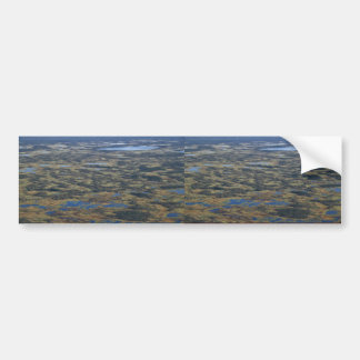 Wetlands and Bog Lakes Bumper Sticker