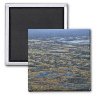 Wetlands and Bog Lakes 2 Inch Square Magnet