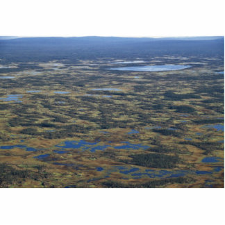 Wetlands and Bog Lakes Photo Sculpture