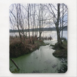 Wetlands Around Blakemere Moss Mouse Pad