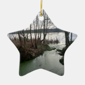 Wetlands Around Blakemere Moss Double-Sided Star Ceramic Christmas Ornament