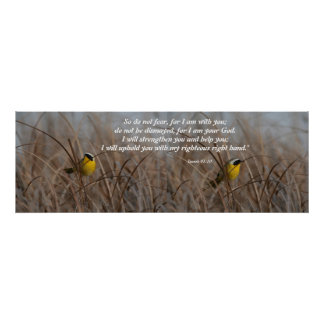 Wetlands Birds Isaiah 41:10 Print