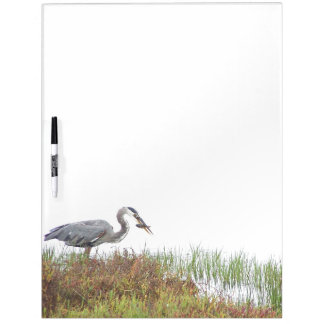 Wetlands Birds Wildlife Animals Photography Dry Erase Board