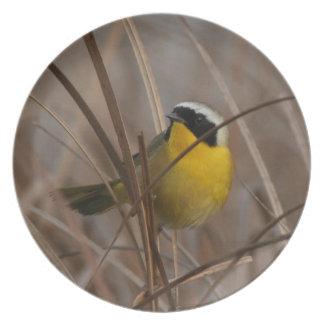 Wetlands Birds Wildlife Animals Refuge Dinner Plate