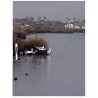 Wetlands Birds Wildlife Animals Refuge Dry-Erase Board