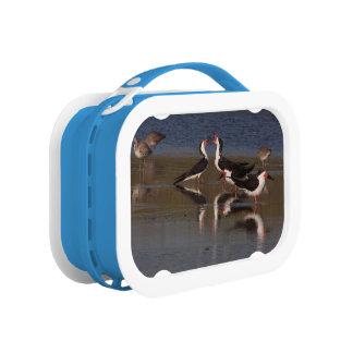 Wetlands Birds Wildlife Animals Refuge Lunch Box